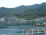 宇和海ふれあい公園の漁港にて