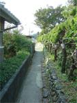 観自在寺への細道